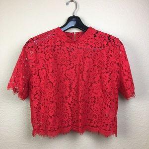 Loft Red Crop Floral Lace Top